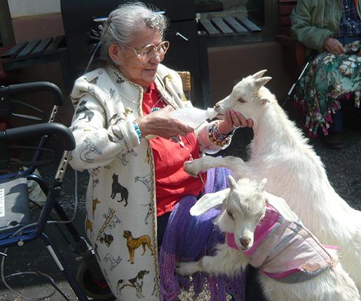 Julia-Goats